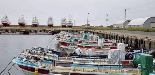コンブ漁船.jpg