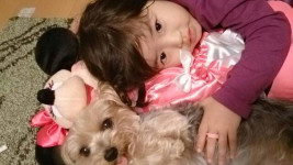 夫婦+愛犬の家庭に赤ちゃんがやってきた!そのとき愛犬は…? 【わん!ダフルストーリー】