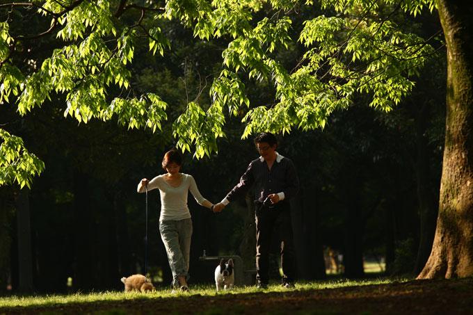 vol.12待っていてくれた「ウリ坊」。愛犬に学んだ人生の極意とは…1