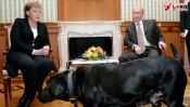 """プーチン大統領の高度な""""ペット外交""""とは!?  政治家とペットの濃密な関係 【ひでたけのやじうま好奇心】"""