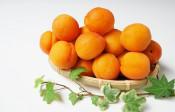 中国でお医者さんのことを「杏林」とよぶ理由【鈴木杏樹のいってらっしゃい】
