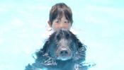 救われた命が別の命を助ける奇跡!強運の犬「福」 【わん!ダフルストーリー】