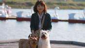 犬と暮らす幸せを一人でも多くの人に…。「普通の飼い主」だった私が、動物ボランティアを始めた理由 【わん!ダフルストーリー】