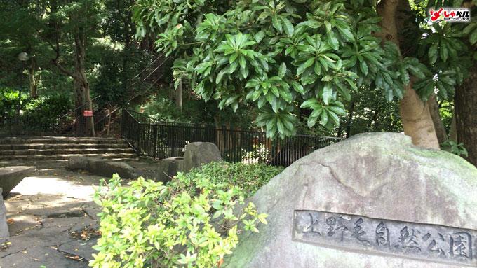 上野毛自然公園