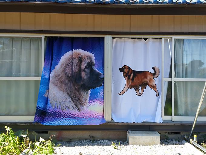 レオンベルガーのカーテン