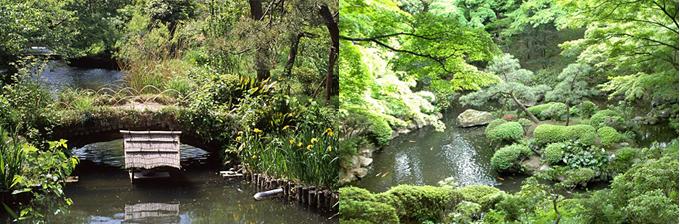 向島百花園,殿ヶ谷戸庭園