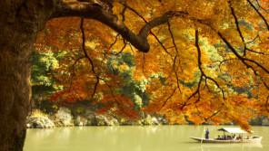 お客様専用の館船で朝の紅葉狩り。嵐山「星のや京都」の限定アクティビティは12/5まで!【本仮屋ユイカ 笑顔のココロエ】