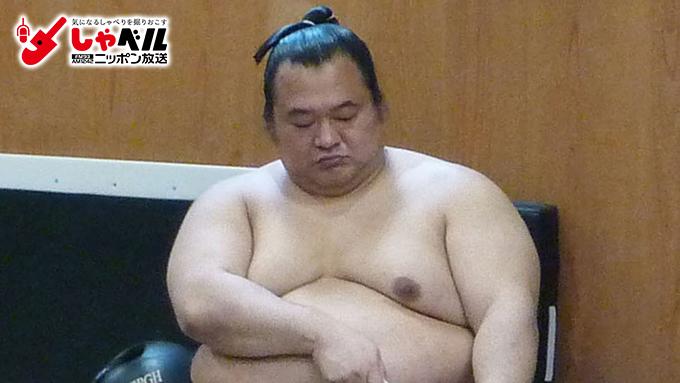 豊ノ島大樹の画像 p1_8