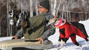 愛犬ブリジットともう一度一緒に走りたい! ウィペット2頭がくれた、心豊かな暮らし【わん!ダフルストーリー】