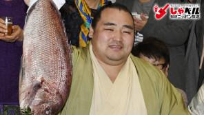 引退危機からの優勝。腰痛を救ったPRP療法とは?大相撲横綱・鶴竜力三郎(31歳)スポーツ人間模様