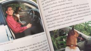 保護した捨て犬とともに歩んだ、タイの王様の犬人生〈前編〉【ペットと一緒に vol.1】