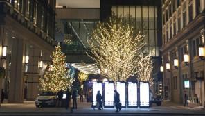 首都圏初!究極のエコカーで灯すクリスマスツリーイルミネーション【ひろたみゆ紀・空を仰いで】