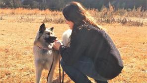 トレーニングの力ってすごい! 元保護犬・ビビリのシオンが笑顔を見せるまで【わん!ダフルストーリー】