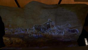 まるで洞窟の暗闇の中にいるみたい!『世界遺産 ラスコー展 ~クロマニョン人が残した洞窟壁画~』【ひろたみゆ紀・空を仰いで】