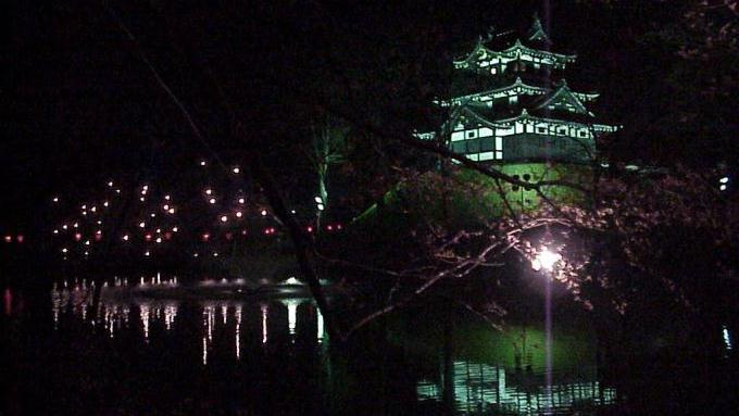 bl170329-7(高田の夜桜)