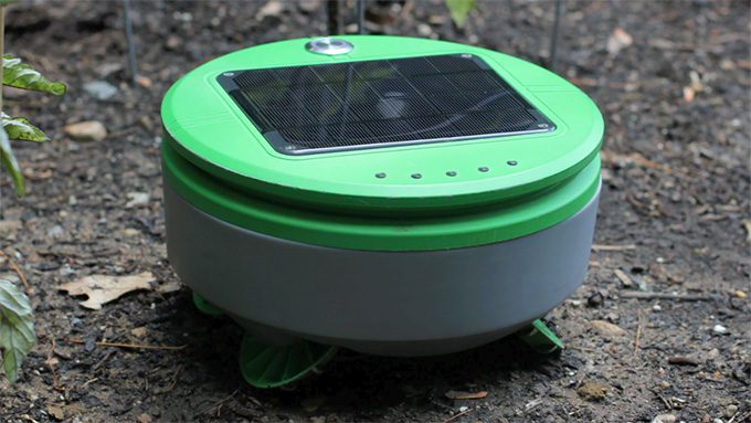 本仮屋ユイカが沖縄の畑で草刈りロボットを使いたい?