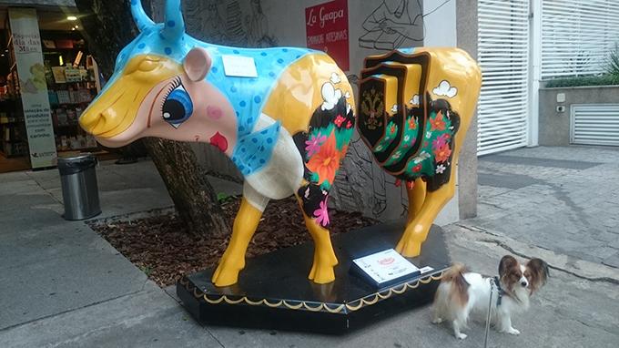散歩 ブラジル 犬