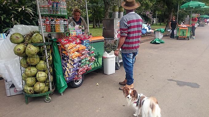 ブラジルでの犬猫ライフは、愛犬のおかげで語学も上達して楽しい発見が満載!