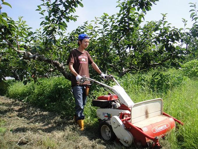 富有柿 栽培 せっきーファーム