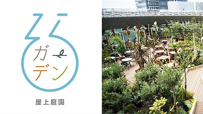 200種類もの観葉植物に囲まれた屋上庭園「そらガーデン」のイルミネーション!