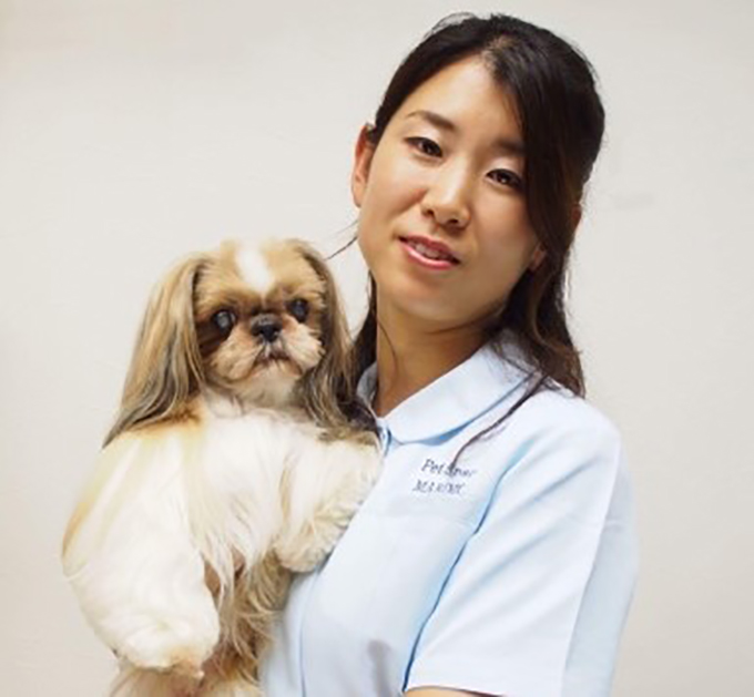 シー・ズー 愛犬 犬 イヌ いぬ ドッグ