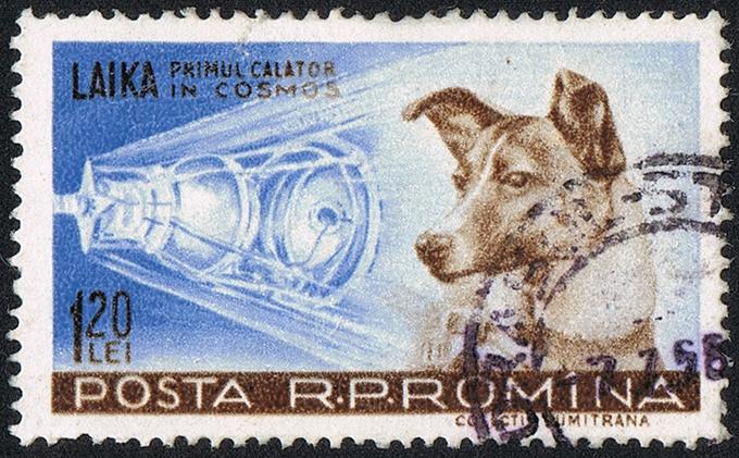 ライカ ロシア 切手 郵便切手 旧ソ連 英雄