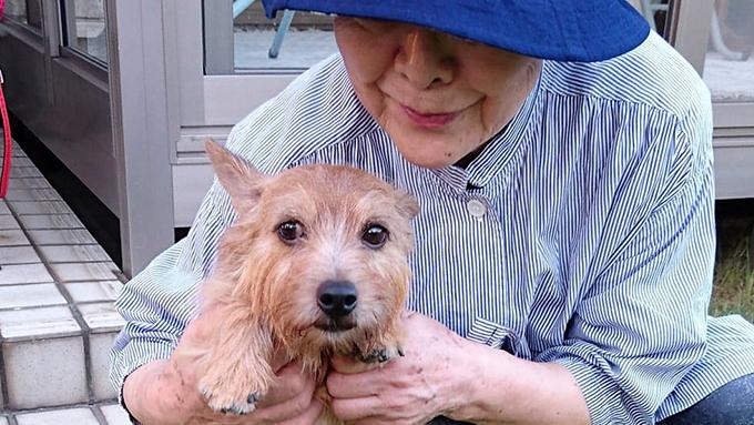 ペットロスで引きこもり状態のアラ80女性を救った、保護犬との偶然の出会い