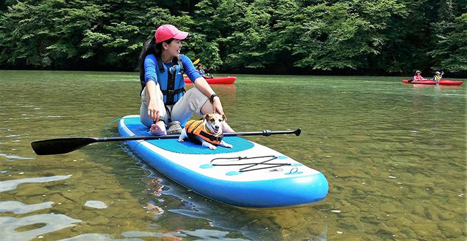 出張ドッグトレーナー イヌ 犬 いぬ 愛犬 カヤック ボート