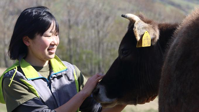 岩手の牧場で学んだ山地酪農を神奈川の山で新たに始める女性のストーリー
