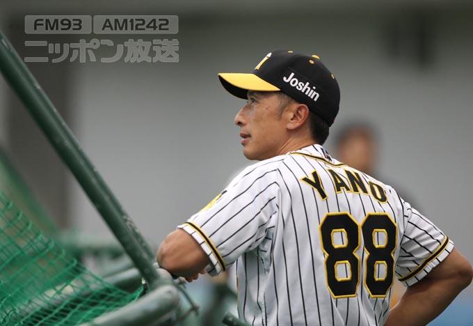 矢野燿大の画像 p1_35