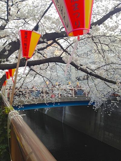 shukuyamabashi.jpg