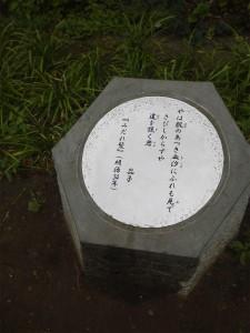 NEC_0840.jpg