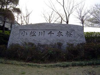 塚越孝の画像 p1_3