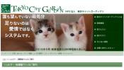 空前の猫ブームと殺処分ゼロへの取組 【ひでたけのやじうま好奇心】
