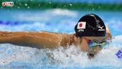 競泳日本代表の秘密兵器をご存知ですか? 【ひでたけのやじうま好奇心】