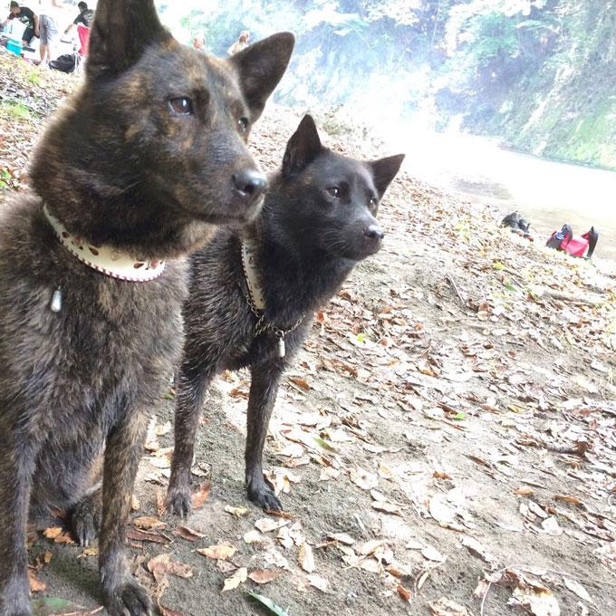 ディアナ(左)もマイアも自然が大好き!