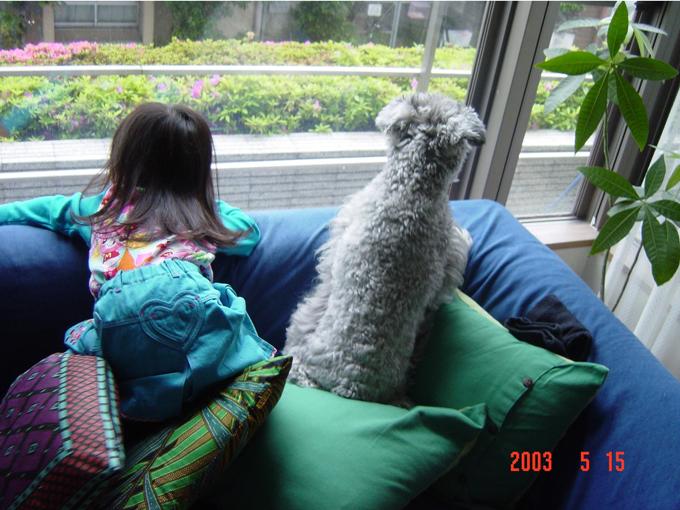 バロンと娘さん。2003年5月