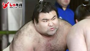自分の人生のために戦う!大相撲関脇・高安晃(27歳) スポーツ人間模様