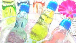 ご存知でしたか?サイダーの由来はサイダーフレーバーエッセンスという香料です。【鈴木杏樹のいってらっしゃい】