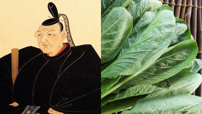 小松菜の名付親は将軍様!?【鈴木杏樹のいってらっしゃい】