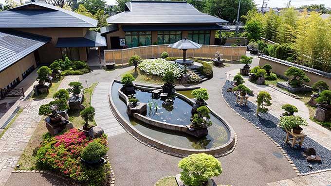ご存知ですか?世界初のBONSAIの聖地「大宮盆栽美術館」【ひろたみゆ紀・空を仰いで】
