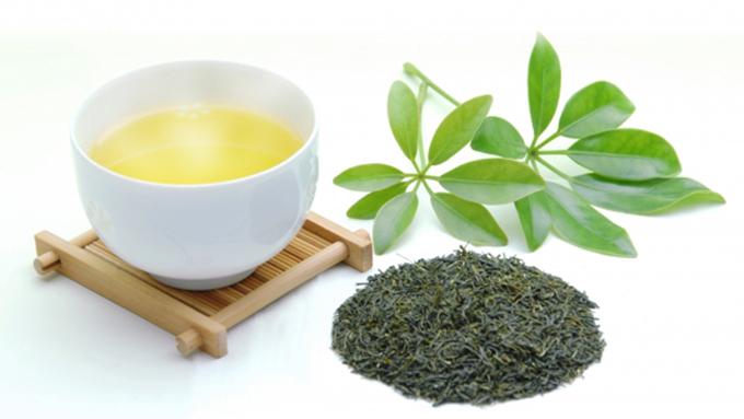 世界中で注目の緑茶&抹茶!業界のたゆまぬ努力の賜物!【ひでたけのやじうま好奇心】