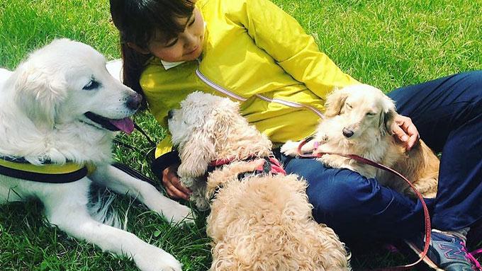 問題だらけの売れ残り犬が、アラサー独女の人生を激変させた!渡米で紡いだ愛犬との感動秘話