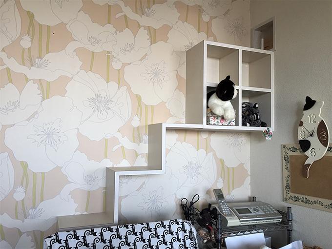 ねこ 猫 リビング 室内