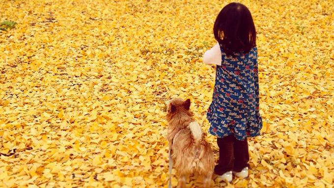 勝気なテリアと仲良く過ごせる!? ママも奮闘。2頭の犬と子どもの6年間のストーリー