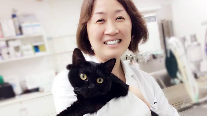 獣医師からペットロスのカウンセラーに転身。愛猫が誘った新境地