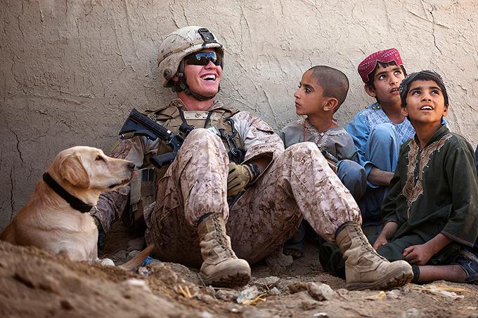 アメリカ海兵隊 軍用犬 軍犬