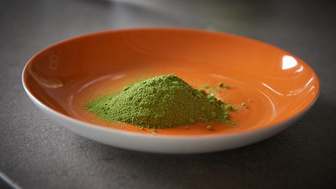 インドの植物「モリンガ」はスーパー植物?