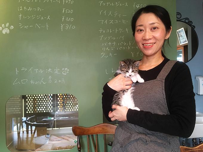 保護猫 猫カフェ ねこ ネコ 猫 しらさぎカフェ