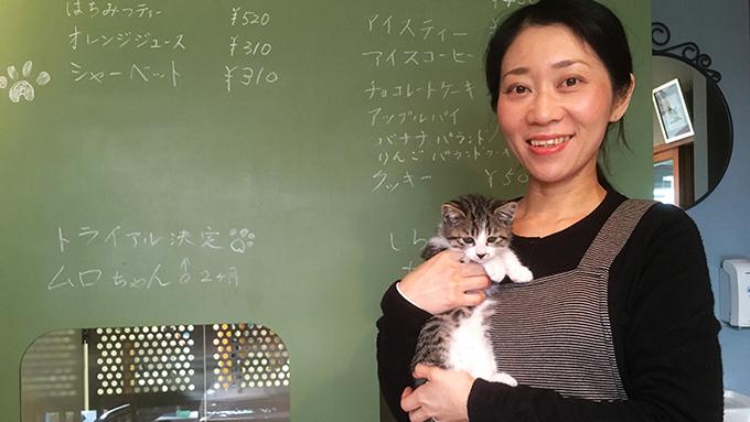 ネコ捨て山から犬猫を助けていた少女が、保護猫カフェを開くまでのヒストリー